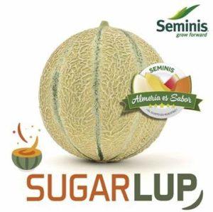 SugarLup